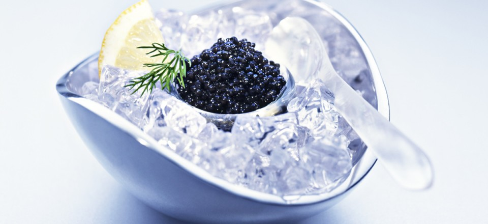 Caviar glace